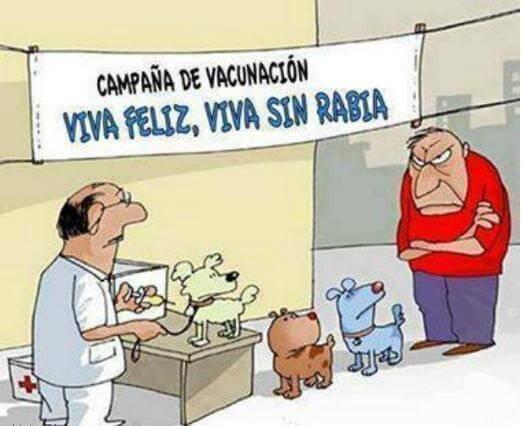 ley vacunacion antirrabica
